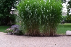 square_grasses_gravel